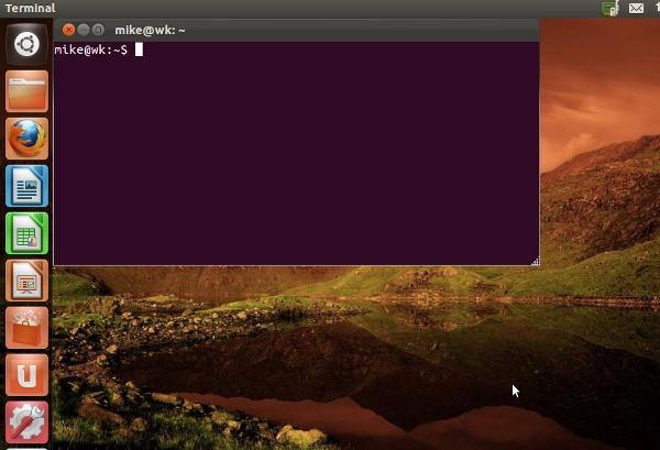Ubuntu 12.04 Beta Terminal