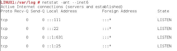 IPv6 Netstat